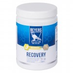Beyers Recovery Plus 600g