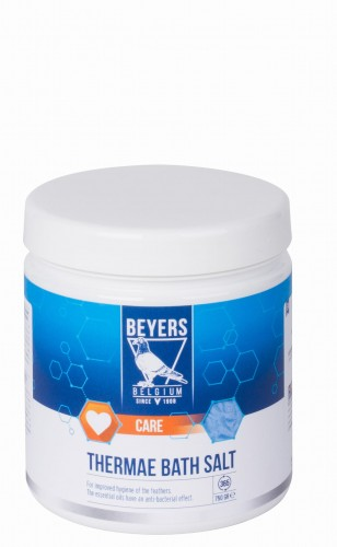 beyers thermae salt.jpg